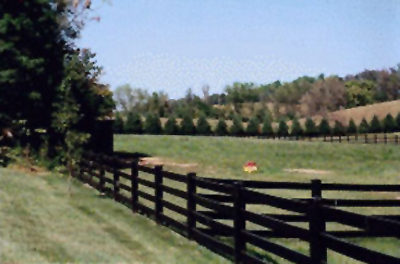 4 Rail High Density Horse Fence